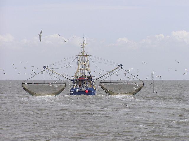 Kapal penangkap ikan. (Photo: Joachim Müllerchen)