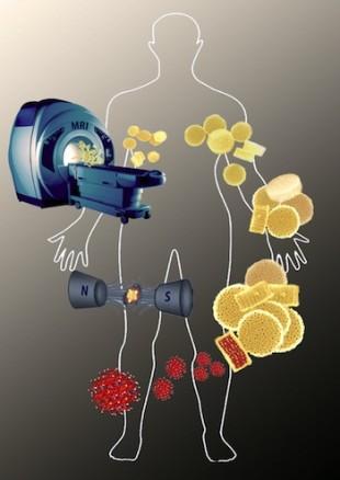 Nanokonstuksi yang mengandung partikel besi oksida dapat membuat alat pencitraan resonansi magnetik menjadi jauh lebih baik untuk mendeteksi dan melawan penyakit. (Ilustrasi oleh Ayrat Gizzatov).