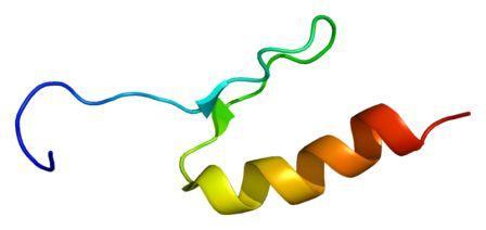 Structure protein SP4 protein berdasarkan PyMOL yang diterjemahkan oleh PDB 1va1. (Image: EMW)