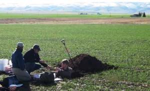 karbon tanah, peneliti