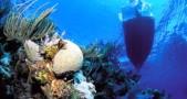 terumbu karang, perahu