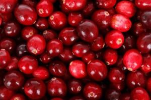kranberi, cranberry