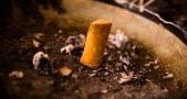 rokok, nikotin